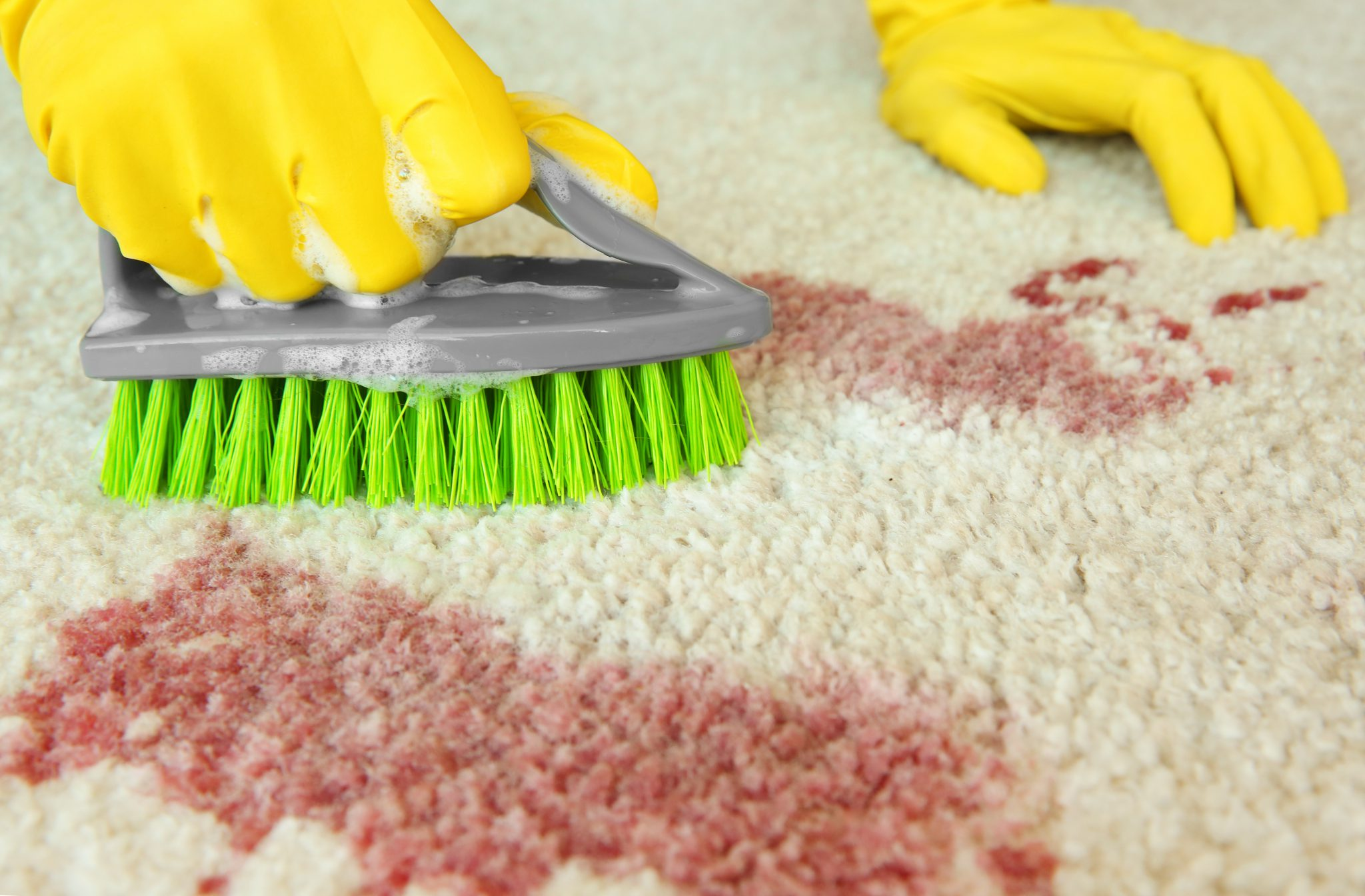 Removing Blood Stains From Carpet Remove Red Stains In
